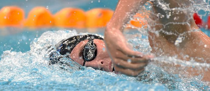 Dolphins wrap on World Short Course